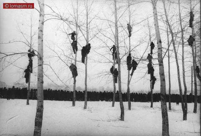 Микола Гнисюк «Грачи прилетели», 1964
