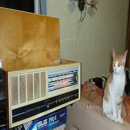 lomasm~ Радиола Сириус-309