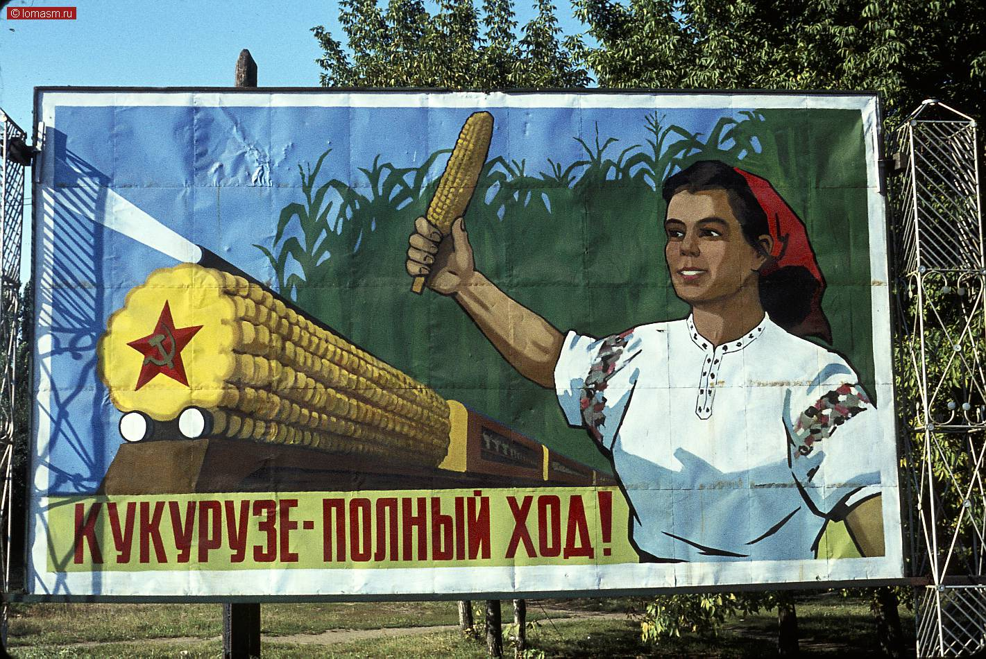 Выращивание кукурузы в ссср 98