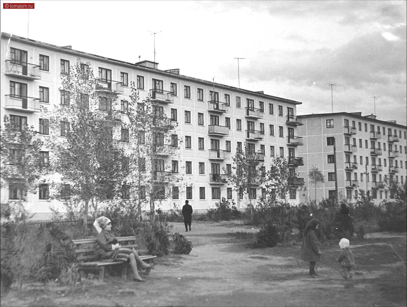 vupi-goldberg-golaya