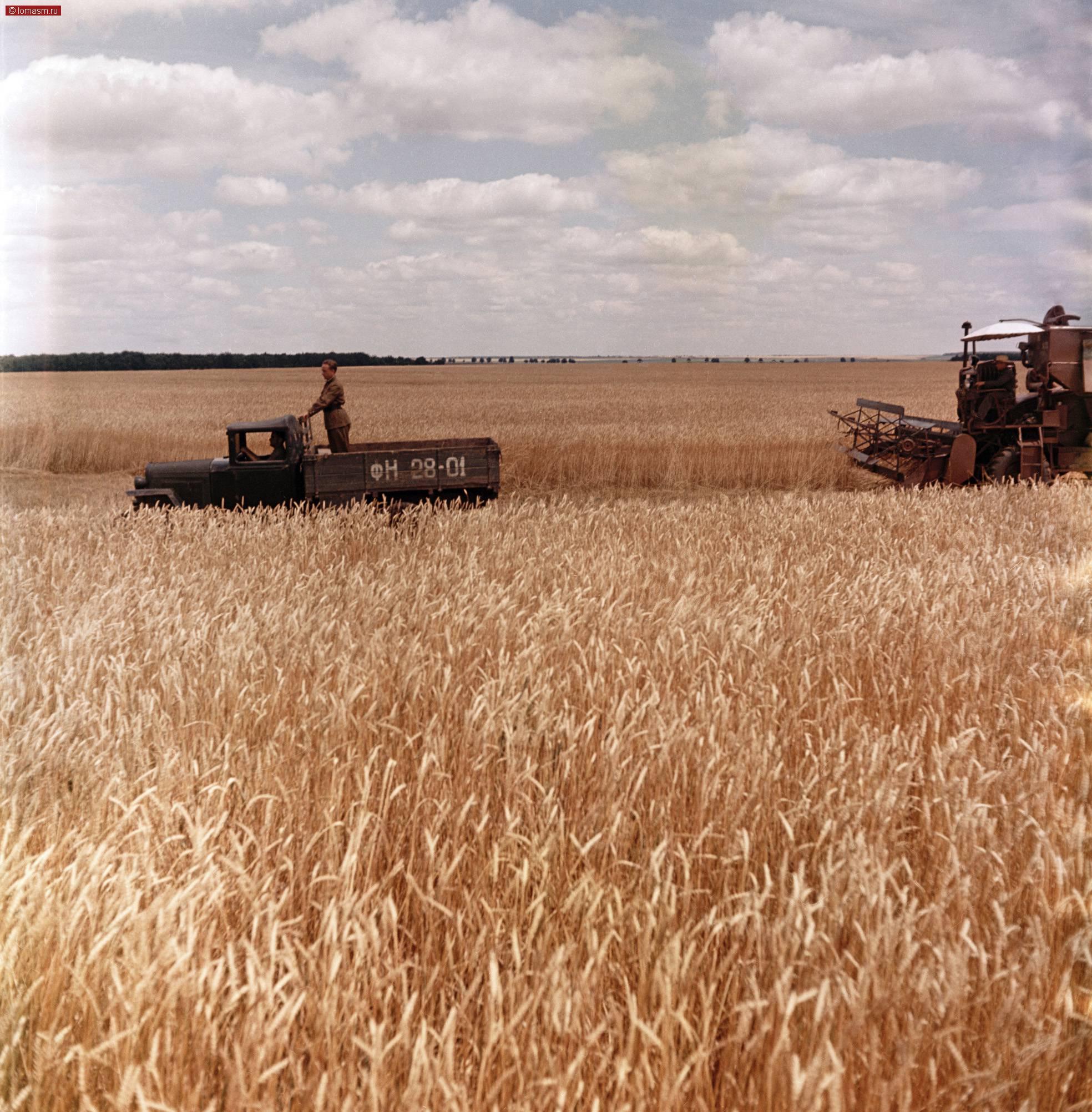 картинки сельское хозяйство в ссср фото чтобы изображение