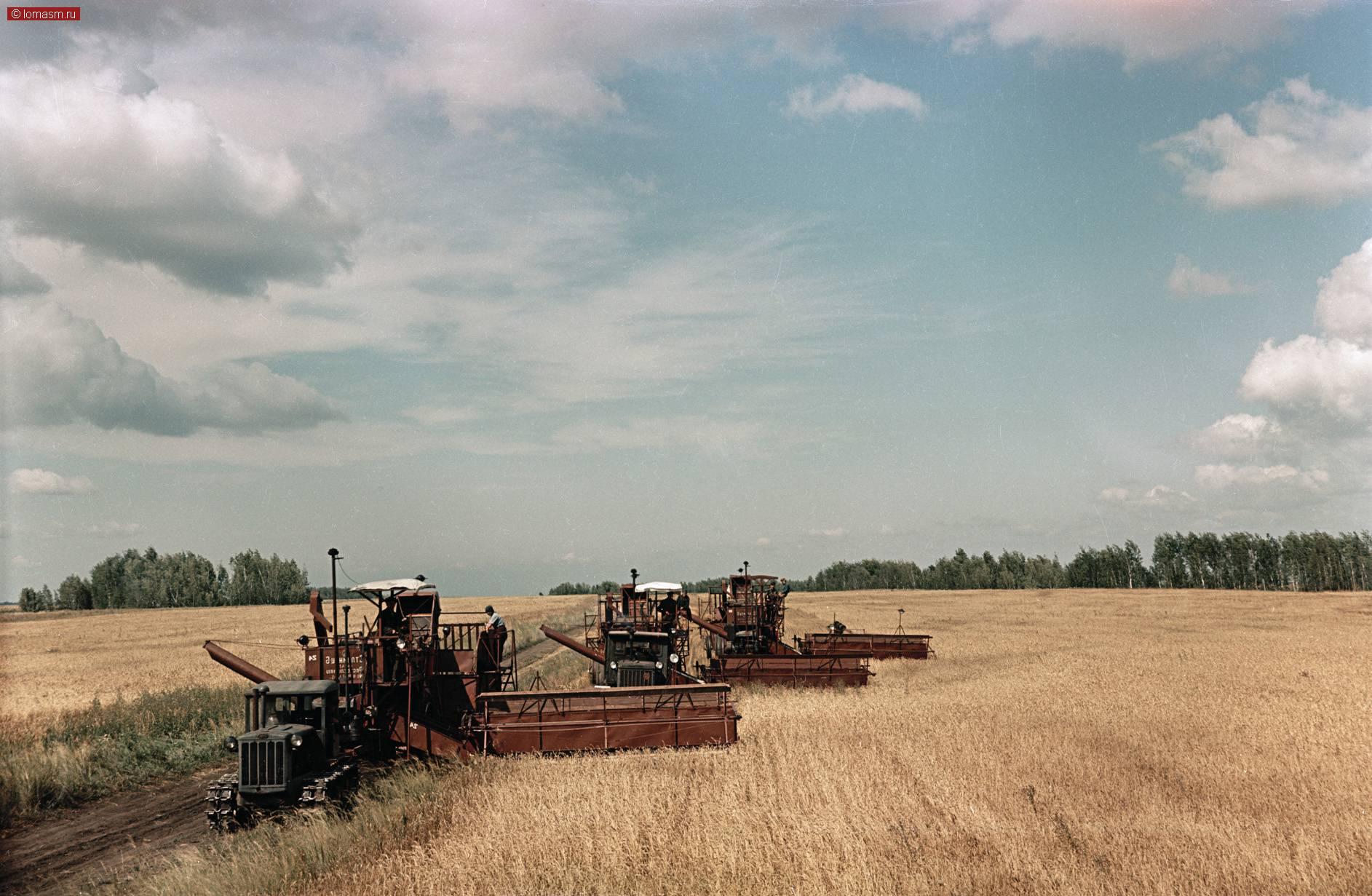 садятся мель сельское хозяйство в ссср фото человеку даются